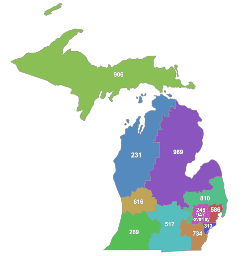 MI Area Codes Map